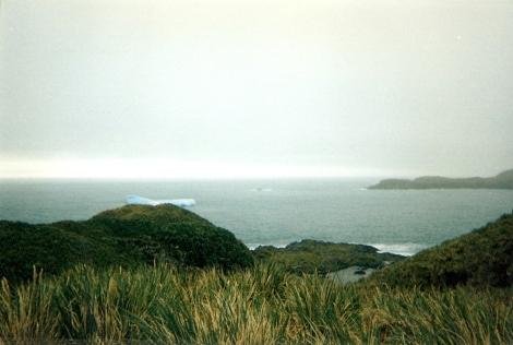 Hercules Bay, South Georgia Island