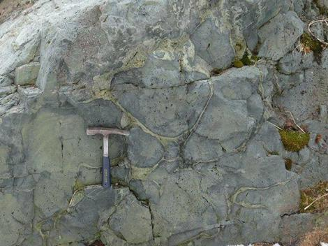 Pillow Basalt from Late Jurassic ophiolitic complex in Larsen Harbour, South Georgia Photo Credit: Rudolph Trouw