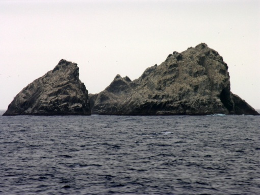 Shag Rocks, En Route to South Georgia Island