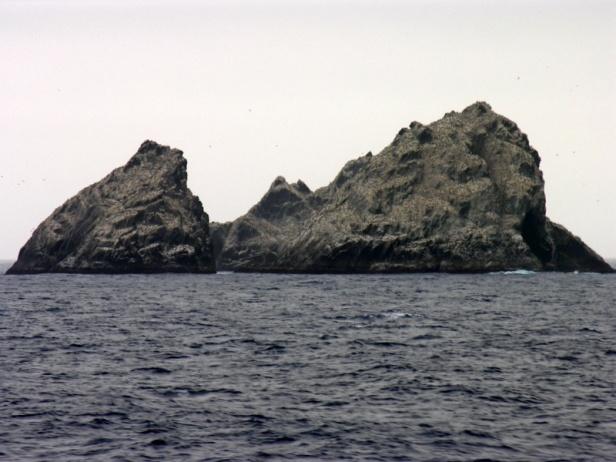 Shag Rocks, En Route to South Georgia Island