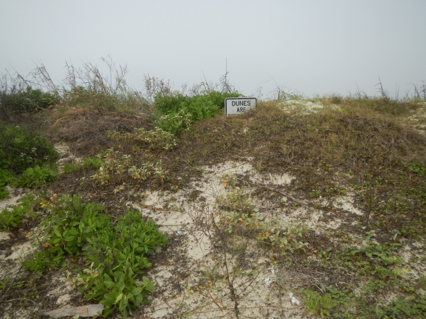 Sign partially buried by dune at San Luis Pass.