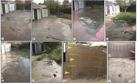 Figure 4. Field photographs (looking southwest) of sand blows in eastern Christchurch following the (A) Darfield ML 7.1 earthquake, (B) 22 Feb 2011 ML 6.3, 5.8, and 5.9 earthquakes, (C) 16 April 2011 ML 5.5 earthquake, (D) 13 June 2011-a ML 5.6 earthquake, (E) 13 June 2011-b ML 6.4 earthquake, (F) 23 December 2011 ML 5.8 and ML 6.0 earthquakes. All photos were taken from same location within 3 h of the last inducing earthquake. G: Distinct liquefaction ejecta units in sand blow stratigraphy. Arrows and nails denote silt drapes. Cross-bedding as sketched. Location of photographed portion of trench location shown in F and H. Microrill development in silt drape at the edge of a sand blow, (I) post-depositional erosion of sand blow and silt drape to form parabolic micro-dunes and ripples only 2 mo. after formation. Figure from Quigley et al.11