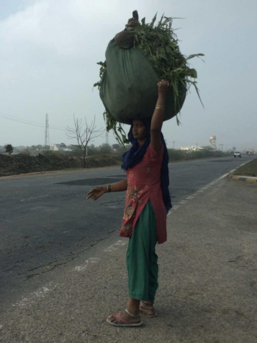 In the countryside, workers balance large loads on their heads.
