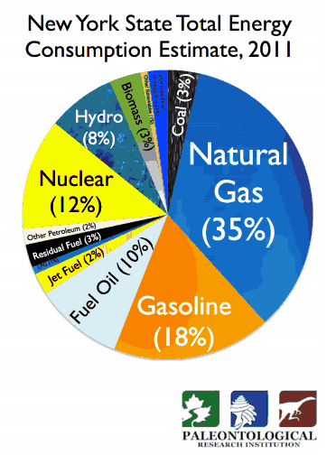 Data from: http://www.eia.gov/state/?sid=NY#tabs-1. On pages 19-20 of Volume 2, End-Use Energy is a graphic that includes similar data along with the total amount of energy generated, and energy lost in conversion. That graphic also shows all petroleum products together and, taken together, energy generated from petroleum nearly equals that from natural gas.