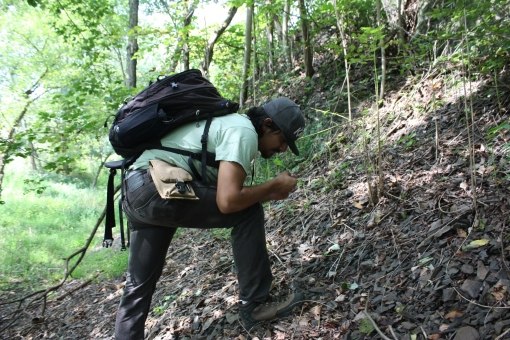 Author searching for fossils through talus along the towpath