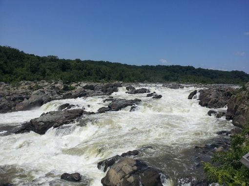 Overlook of the Potomac River and the Mather Gorge Formation at Great Falls, MD
