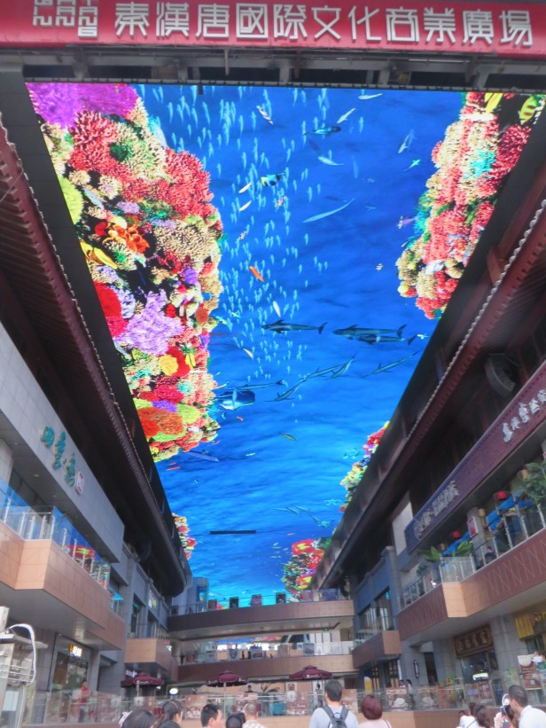 "A new multi-story shopping mall has a huge, ginormous animated ""TV screen"" ceiling, where scenes of a tropical ocean were played over our heads, making it seem like we were in the bottom of an enormous aquarium. The scenes change to winter ski scenes, hot airballoons, or watching flying geese overhead etc., and of course the less exciting interspersed ads."