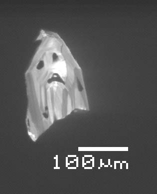 MicronGhost