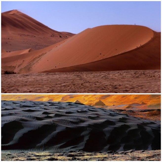 Dunes collage